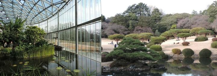 collage Shinjuku garden 02