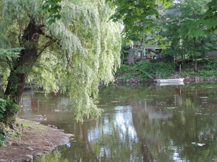 Parc Raimbault (2)