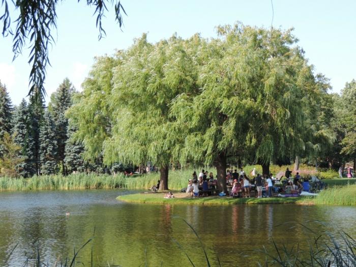 Parc Jarry (4)