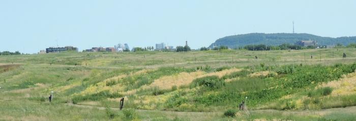 11 Parc du Complexe environnemental de St Michel (4)