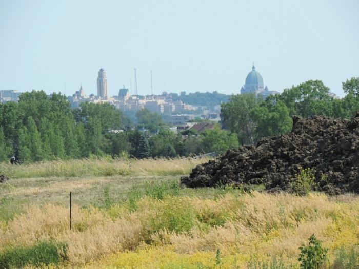11 Parc du Complexe environnemental de St Michel (6)