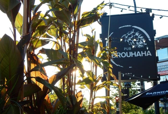 01-broue-pub-brouhaha-1