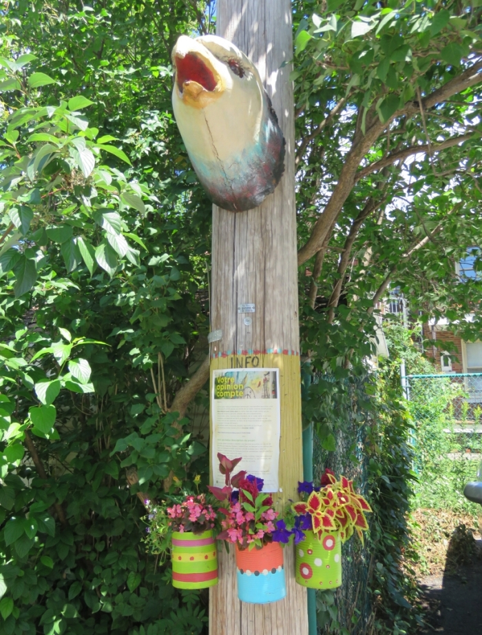 12 Vieux-Rosemont quartier Beaubien (18)