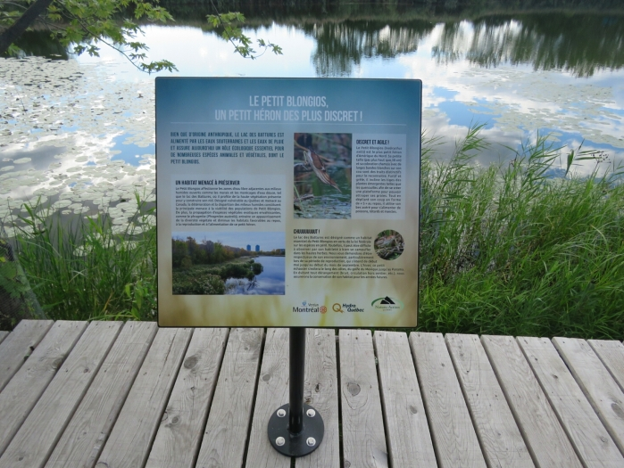 03 ile-des-Soeurs lac des Battures (13)