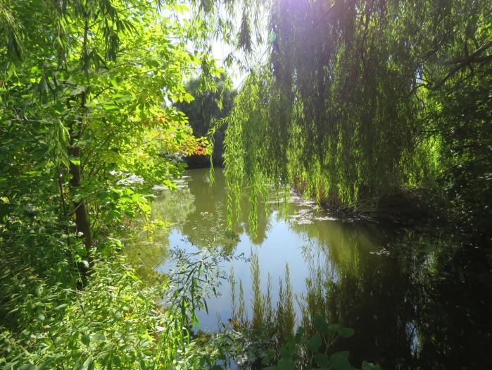 06 ile-des-Soeurs maisons sur le lac (5)
