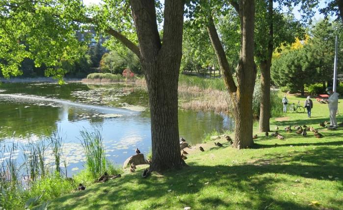 08 ile-des-Soeurs parc Lacoursiere (3)